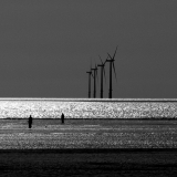 CROSBY-BEACH-by-Marion-Merkens