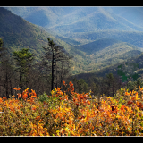 FALL-IN-THE-MOUNTAINS-by-Frank-Hobbs