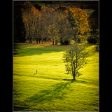 LONG-AUTUMN-SHADOWS-by-Peter-Edge