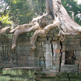 TA-PROHM-by-Alison-Matthews