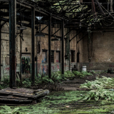 OLD-WAREHOUSE-by-Becky-Lister
