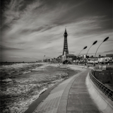 TOWARDS-THE-TOWER-by-Lisa-Travers-1