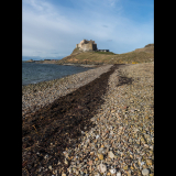 SEA-STONE-AND-SEAWEED-LINDISFARNE-by-Lisa-Travers
