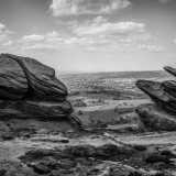 ROACHES-ROCKS-by-Jackie-Sellers