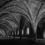 THE-CELLARIUM-by-Lisa-Travers