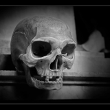 MEMENTO-MORI-by-Barry-Thomas