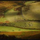 DOWNLAND-WALK-by-Peter-Edge