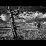 FARMLAND-by-HANS-KRALT-7835-2