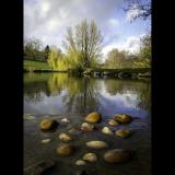 SHADES-OF-AUTUMN-by-Rosemary-Gooch
