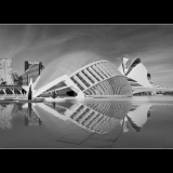 TOMORROWLAND-VALENCIA-by-Barry-Thomas