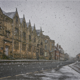 JUST-A-LIGHT-DUSTING-by-Jackie-Sellers