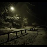 SNOWY-SNOWY-NIGHT-by-Wendy-Beasley