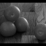 BLACK-AND-WHITE-TOMATOES-by-John-Riddy