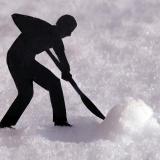 BLOOMIN-SNOW-by-Mark-Eden