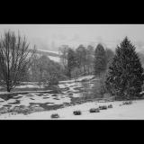 SNOW-STORM-by-Rosemary-Gooch-copy
