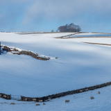 SNOWY-MORNING-by-John-Heppell-scaled