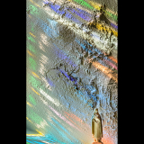 HOLY-LIGHT-by-Sara-Miller